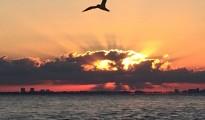 Happy Monday Boca Raton - Wishing All a Great Week!  Photo Courtesy of Rick Alovis