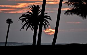 Sunday Sunrise - Good Morning Boca Raton from Gasparilla Island - Photo Courtesy Rick Alovis
