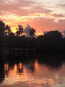 Have a Great Tuesday Boca Raton - Photo Courtesy Rick Alovis