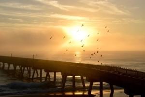 Foggy Morning at the Pier - Photo Courtesy Rick Alovis