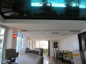 Chanson Restaurant with fish tank in ceiling