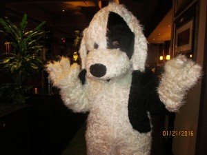 Mascot for Tri-County Animal Rescue