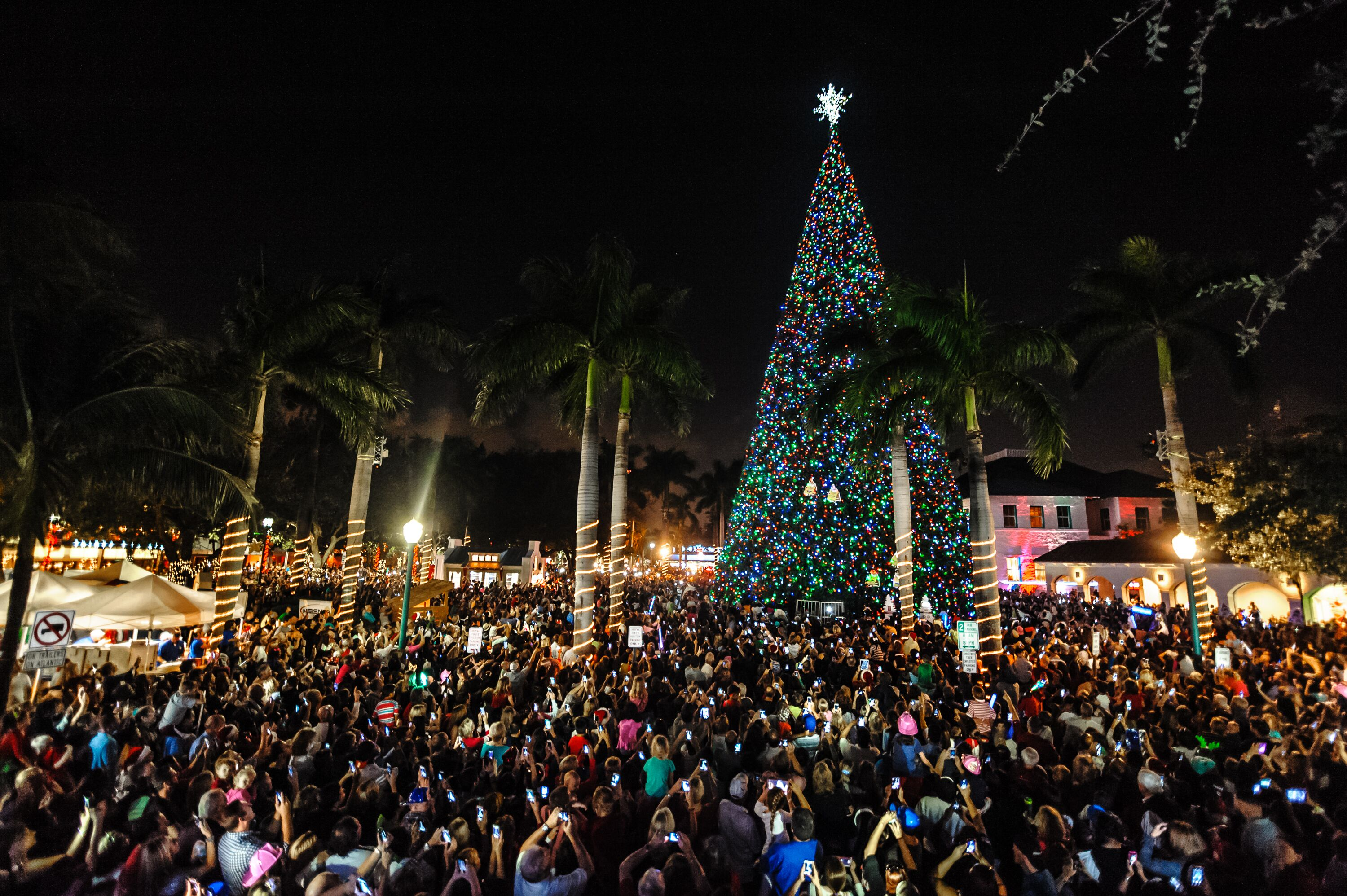 Delray Beach to \'Light 100 Ft Christmas Tree\' at Old School Square ...