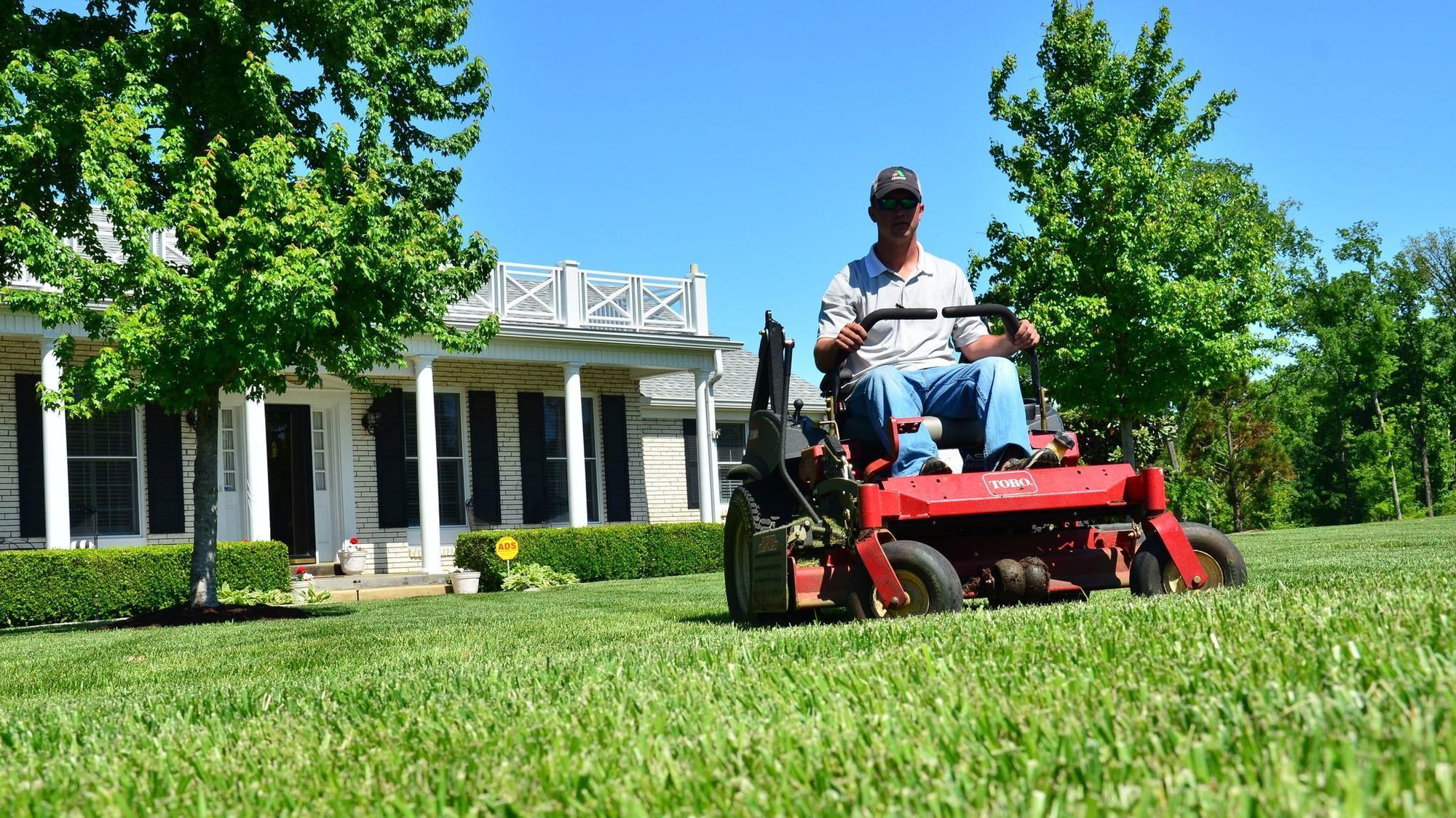 There 39 s an app for that greenpal launches in boca raton for Local lawn care services