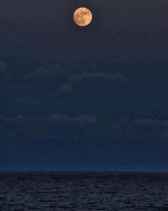 Happy Super Moon Boca Raton - Photo Courtesy Rick Alovis