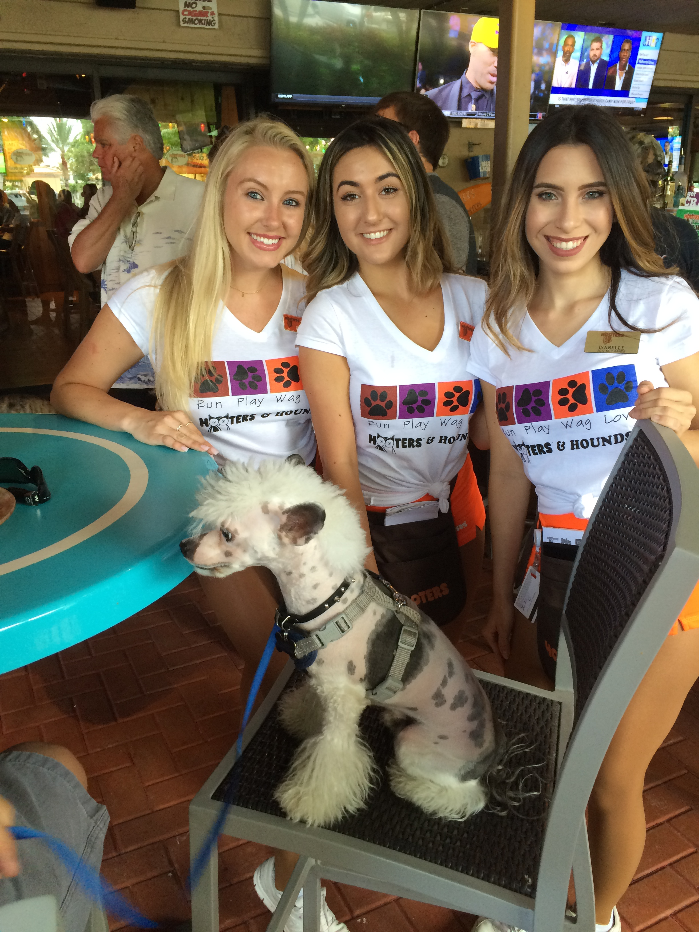 4th Annual Pooches On The Patio Event At Boca Raton