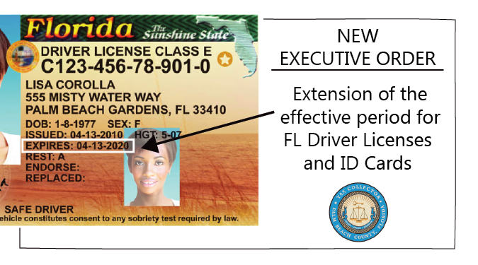 FL DL 1 - Florida Dmv Palm Beach Gardens Fl
